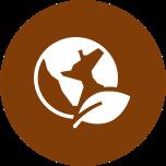 environmental_icon_lrg